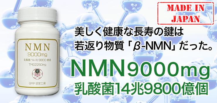 NMNと乳酸菌